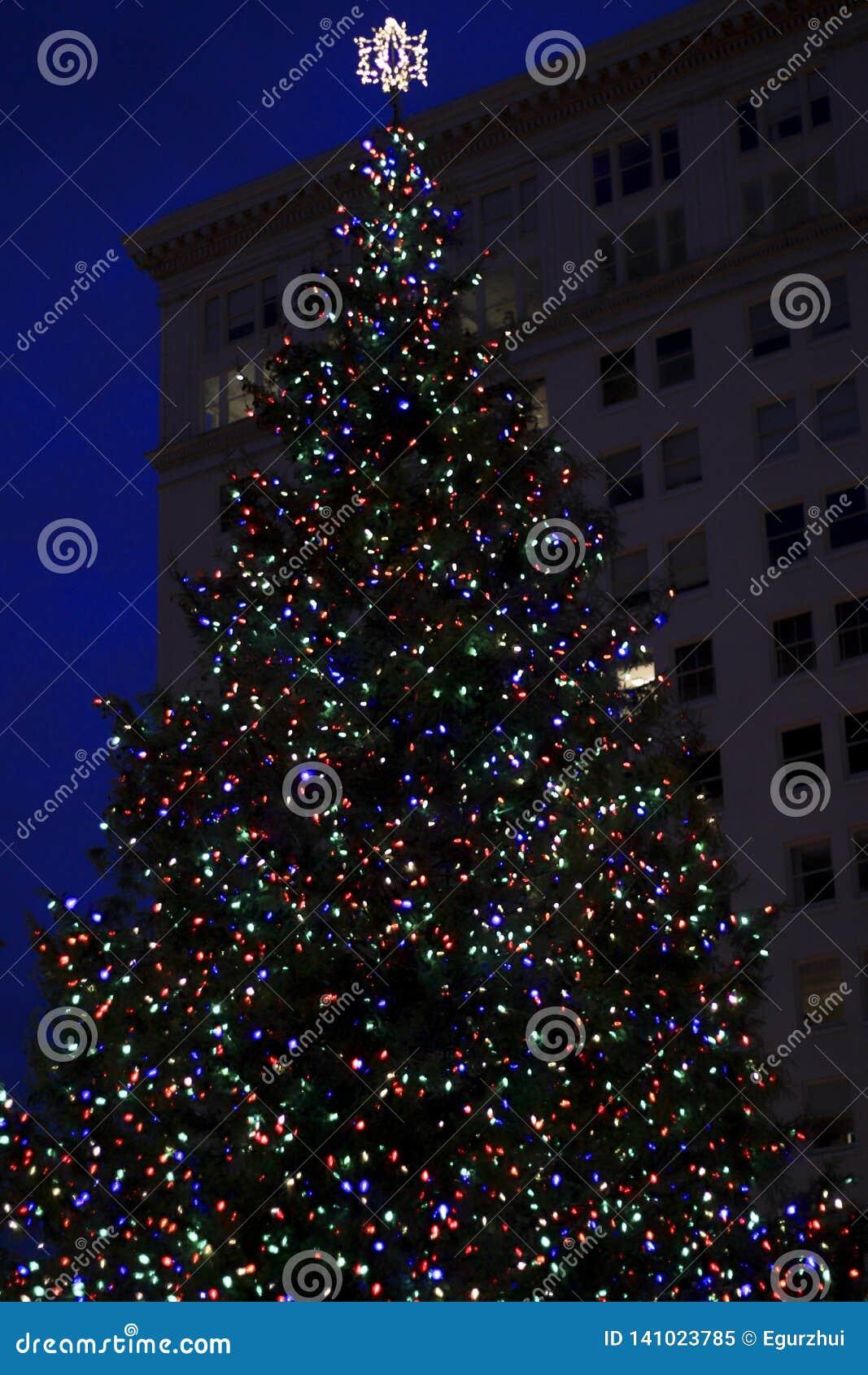 Julgran i staden