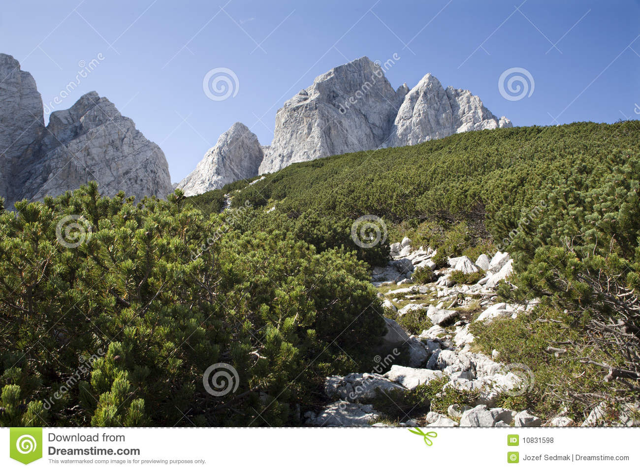 Alp Peak http://www.dreamstime.com/royalty-free-stock-photos-julian-alps-jalovec-peak-image10831598