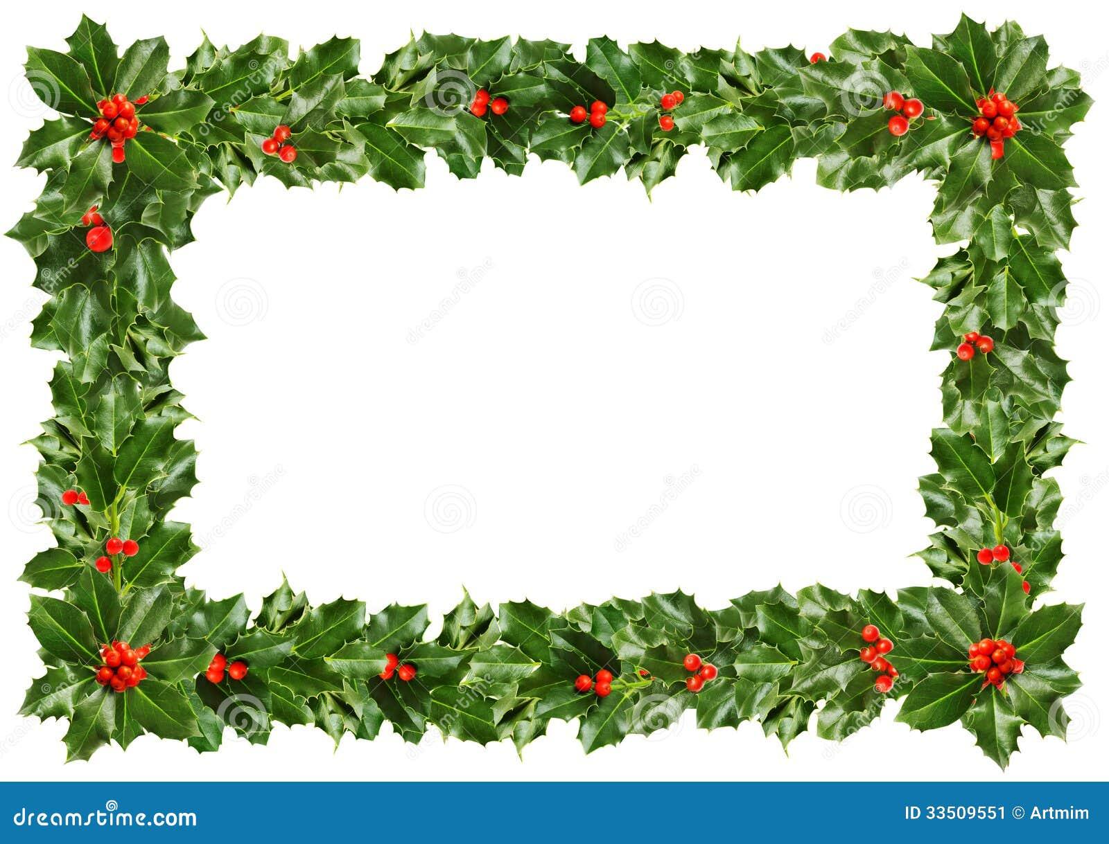 Juljärneksidor - ram på vit