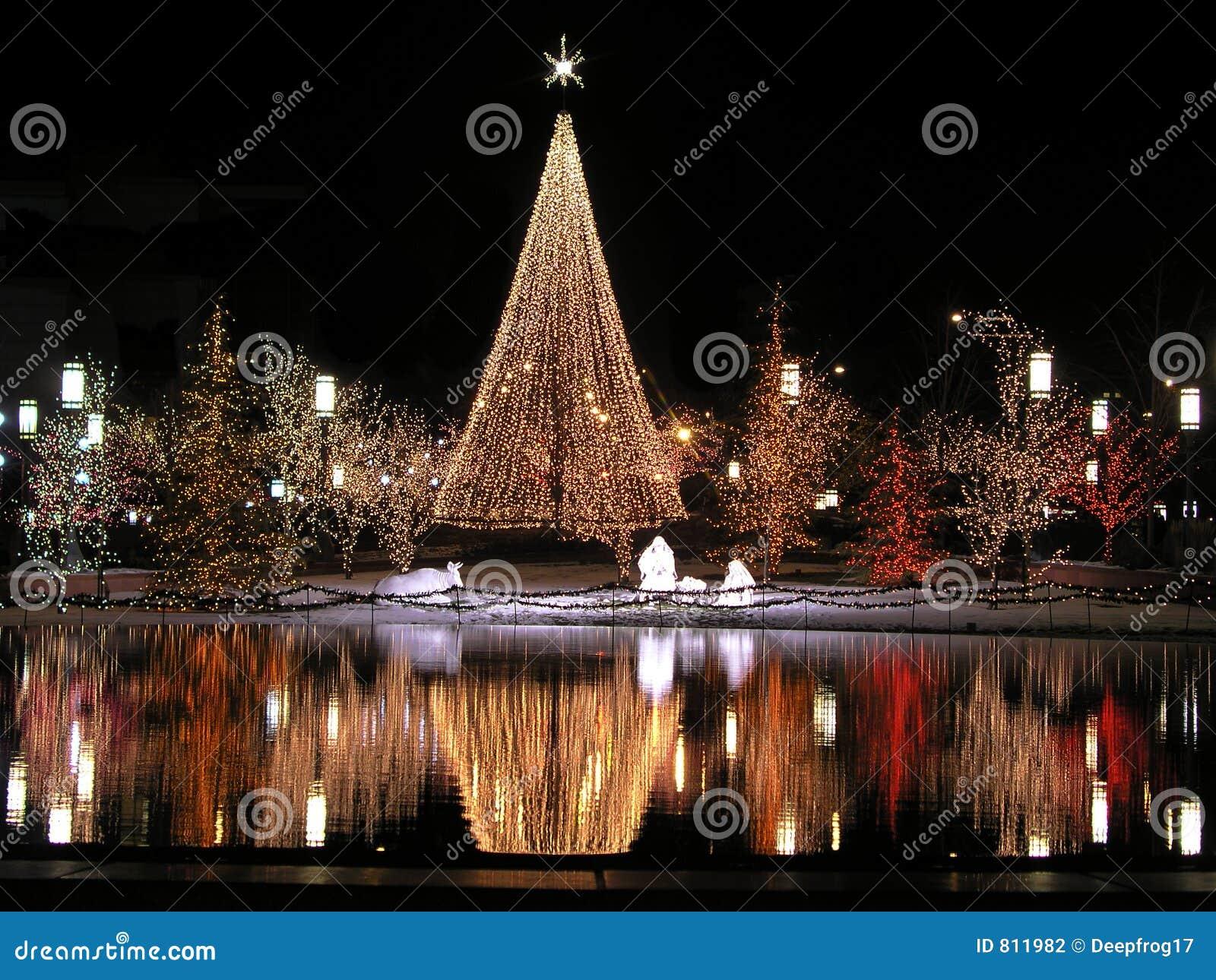 Julnattreflexion