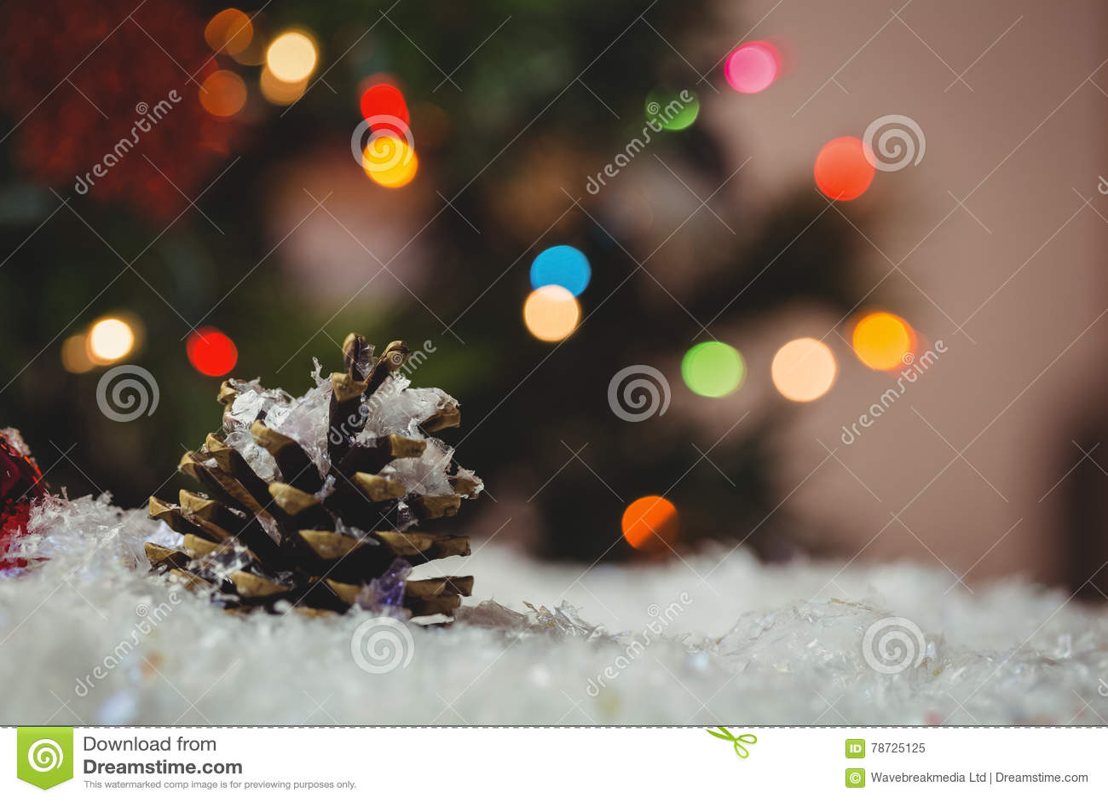 Julstruntsaken och sörjer kotten på snö