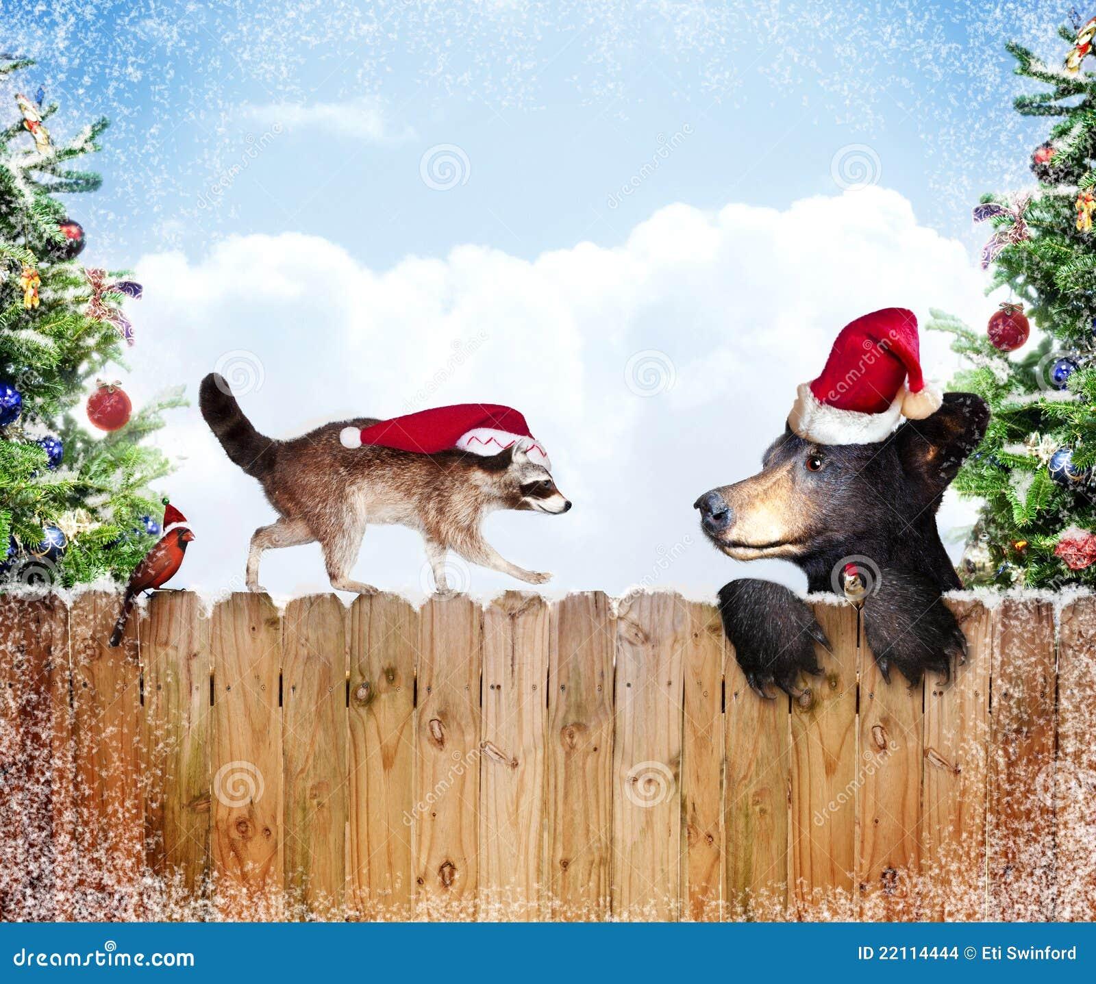 Julvänner
