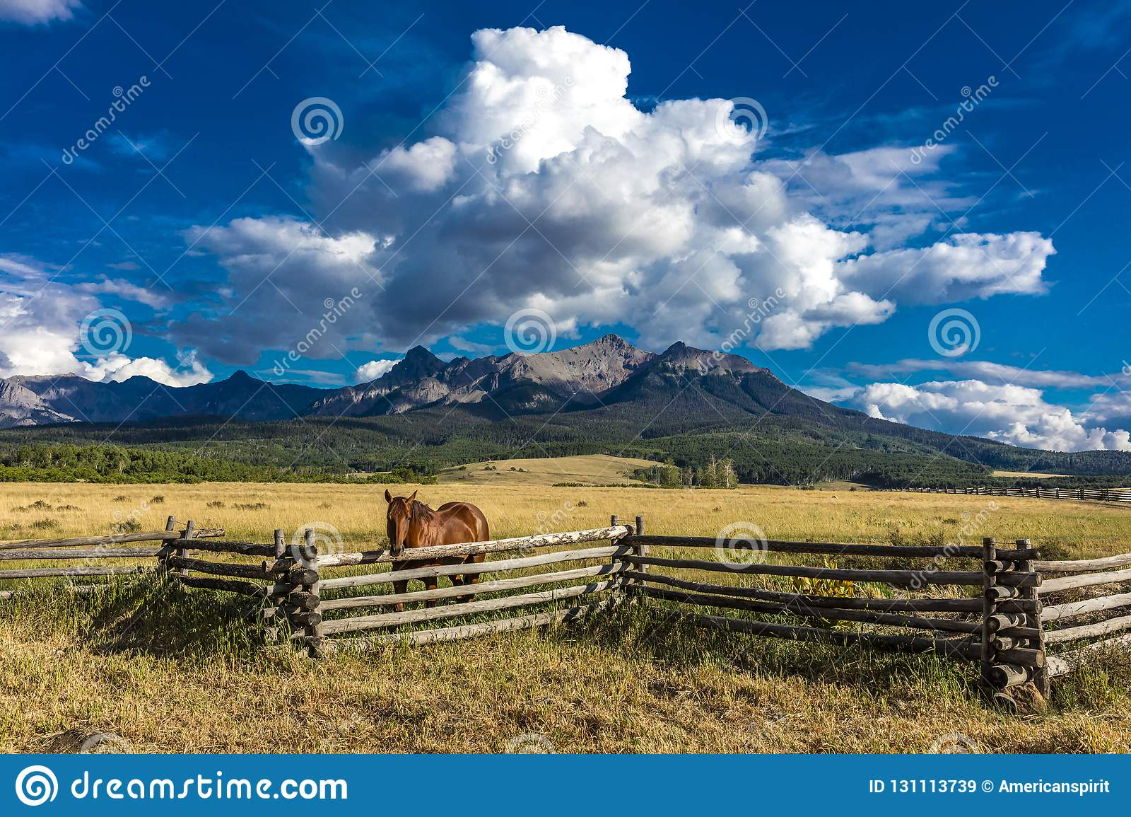 JULY 12, 2018, RIDGWAY COLORADO USA - Horse overlooks worm western fence in front of San Juan Mountains in Old West of Southwest C
