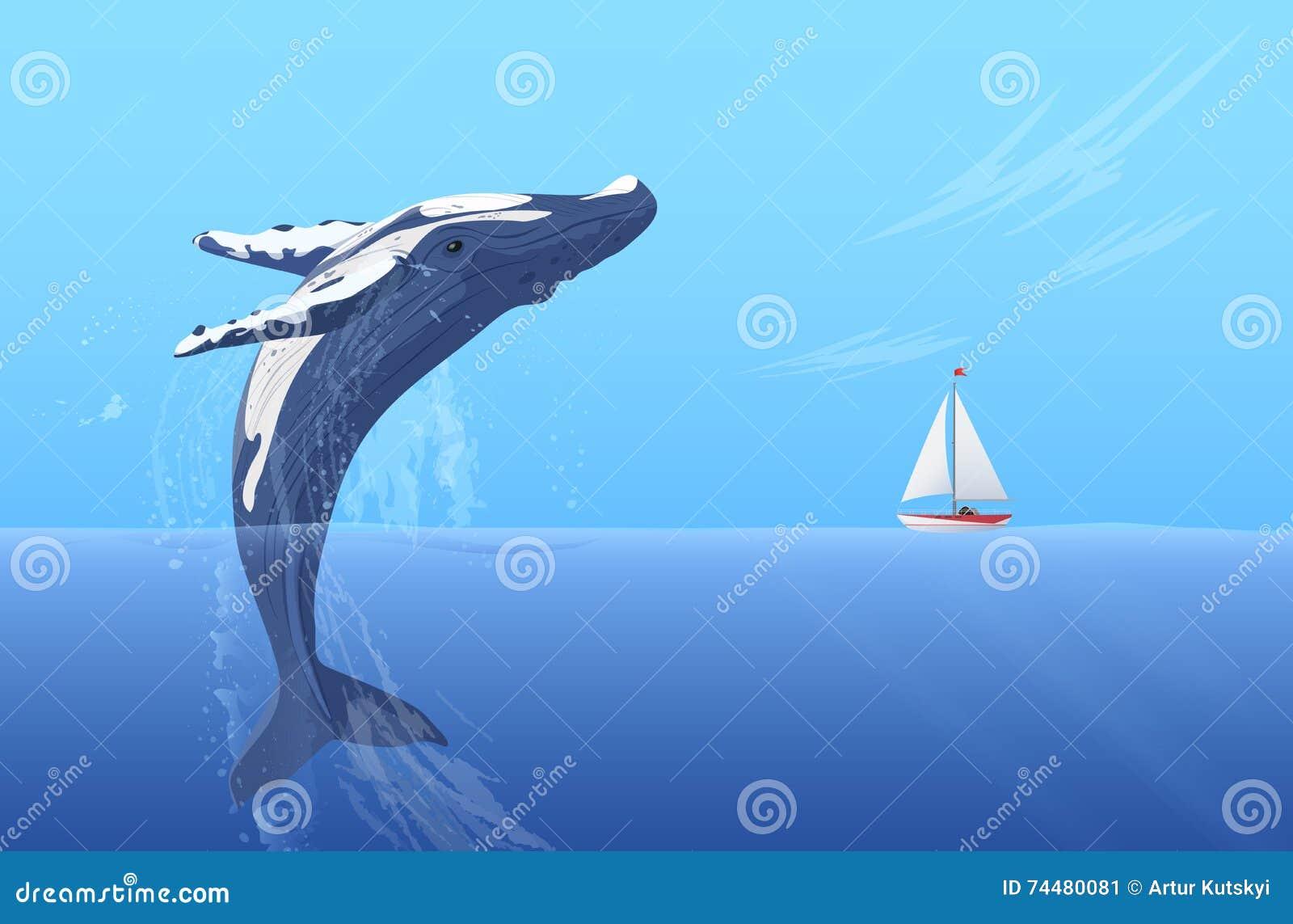 Jump Humpback Big Huge Whale Near Small Boat Ship Yacht. Hidden Ocean ...