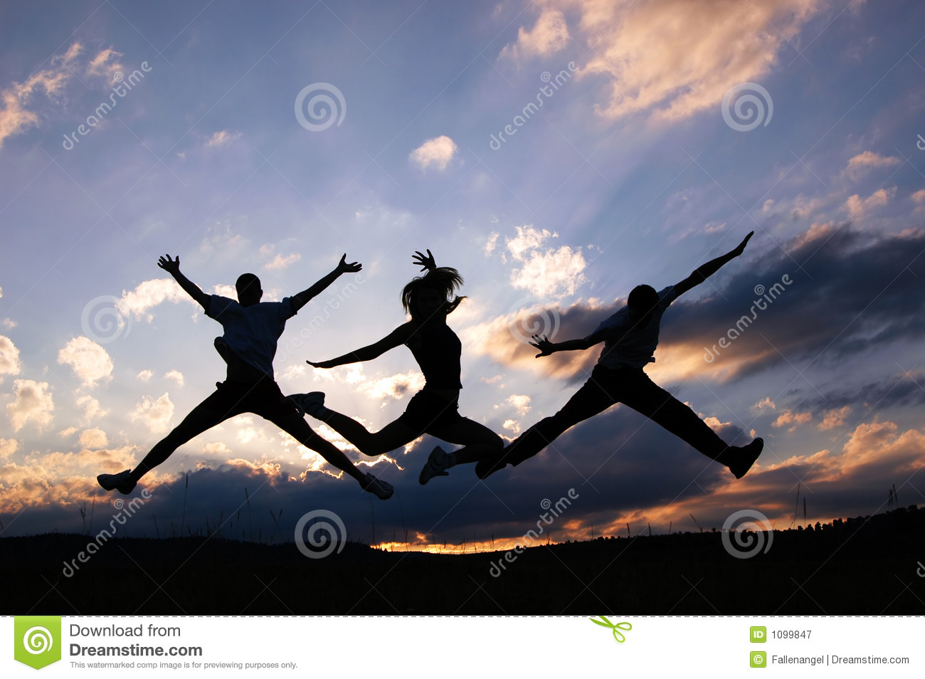 jump for joy royalty free stock photography image 1099847