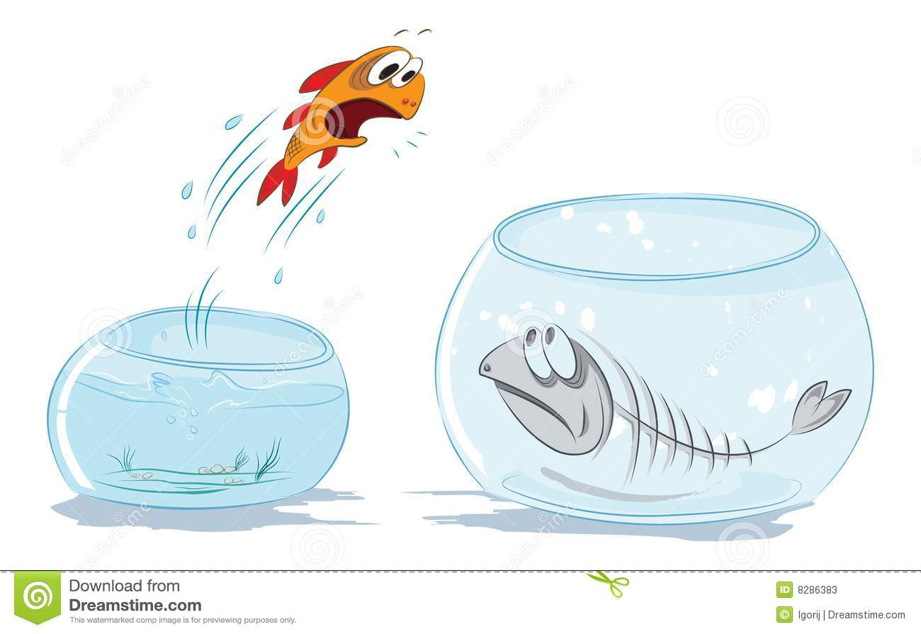 Fish jumping out of water vector for Dream about fish out of water