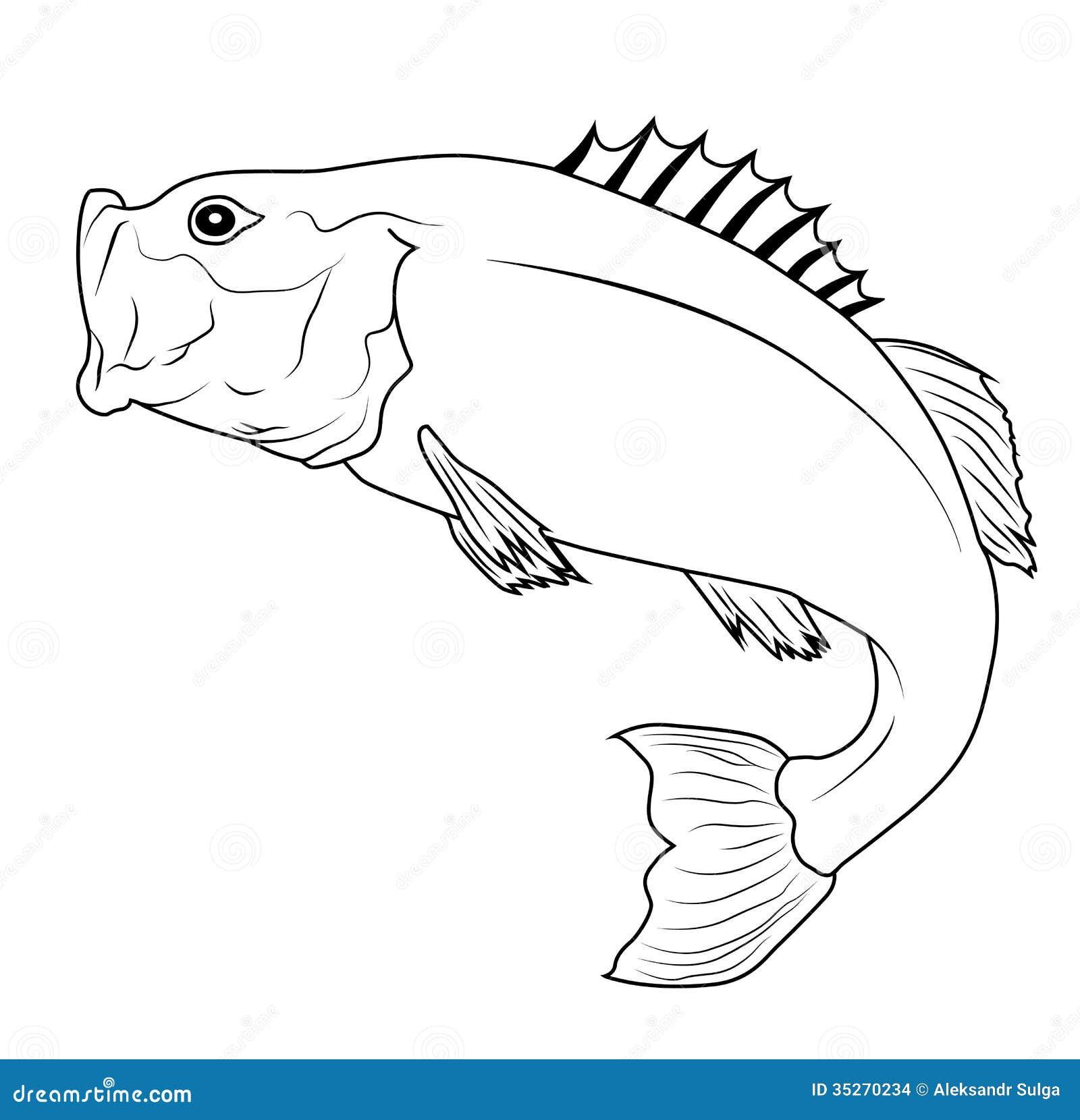 Freshwater fish jumping - Jumping Fish