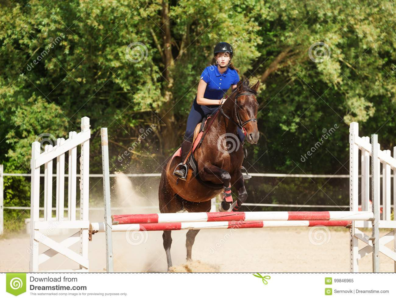 Jumping horse carrying horsewoman during training