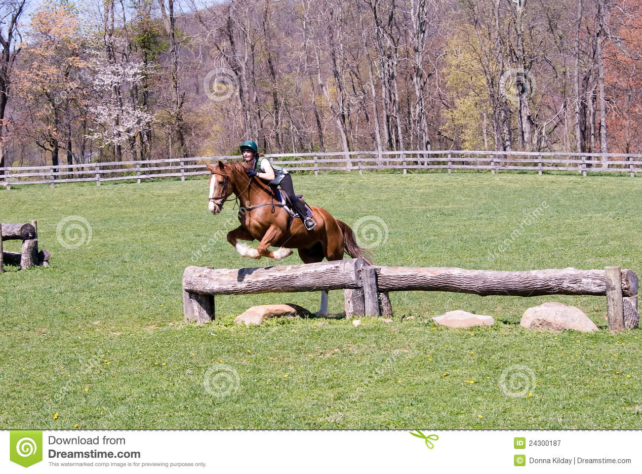 Jumping Horse In Field Royalty Free Stock Photography