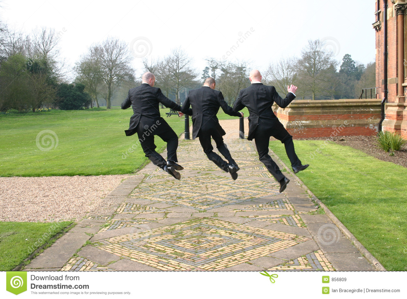jumping for joy royalty free stock images image 856809