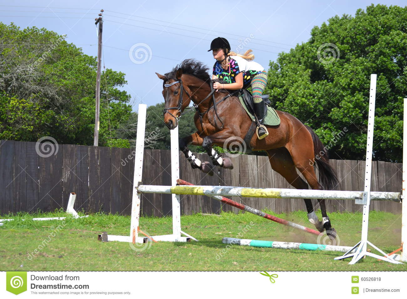 Jumping Mare Editorial Stock Photo Image Of Farm Horses 60526818