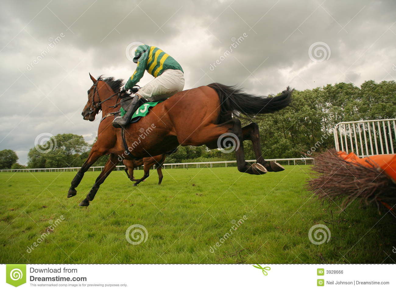 jumping race horse royalty free stock image image 3928666 horses clipart black and white horse clipart images