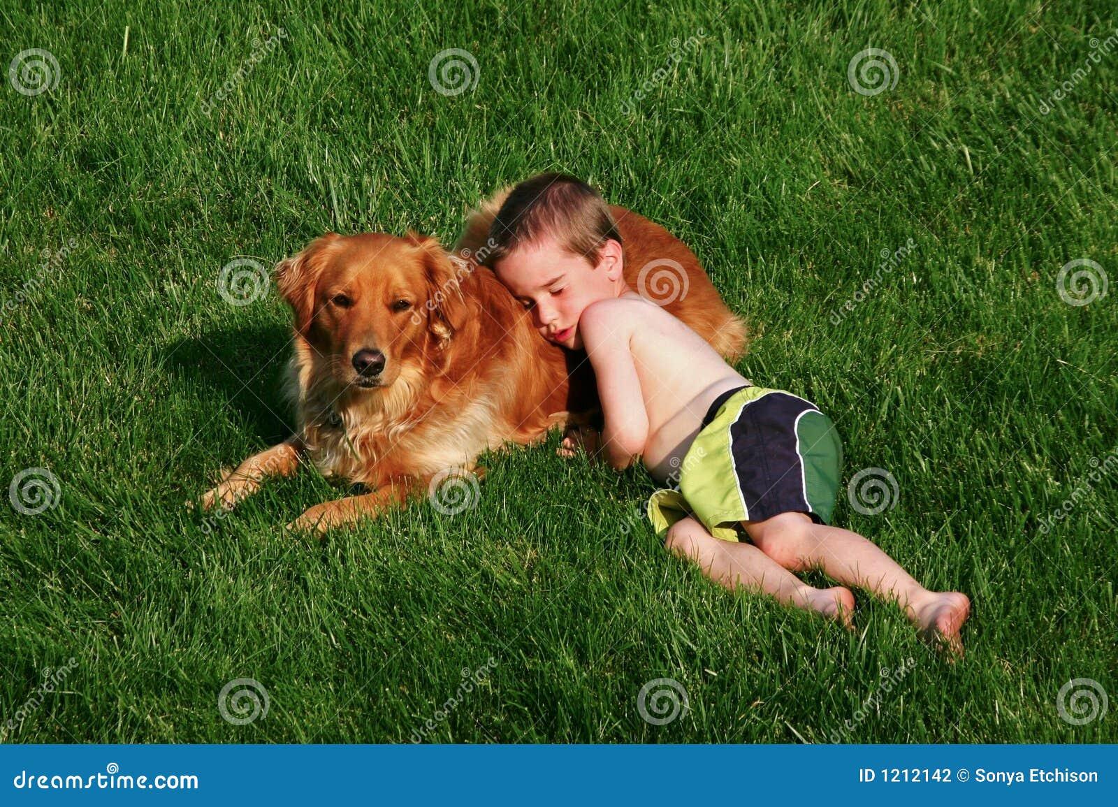 Junge Der Auf Hund Schl Ft Stockfotografie Bild 1212142