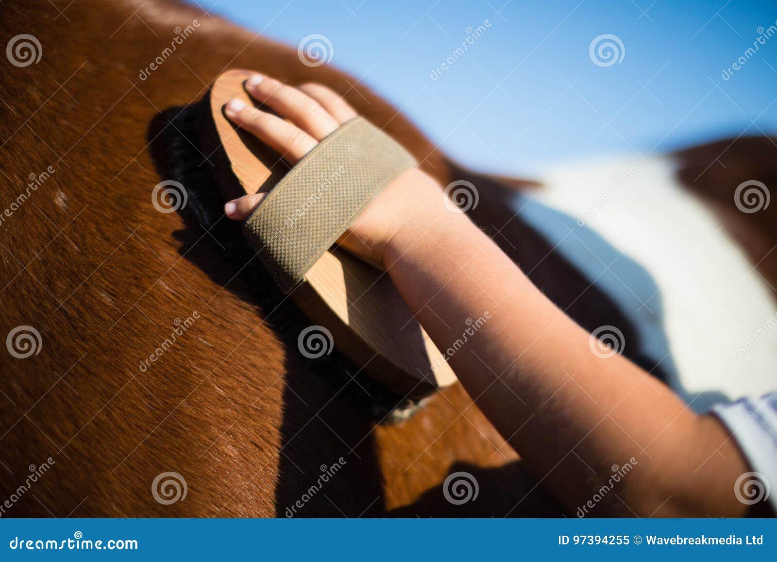 Junge, der das Pferd in der Ranch pflegt