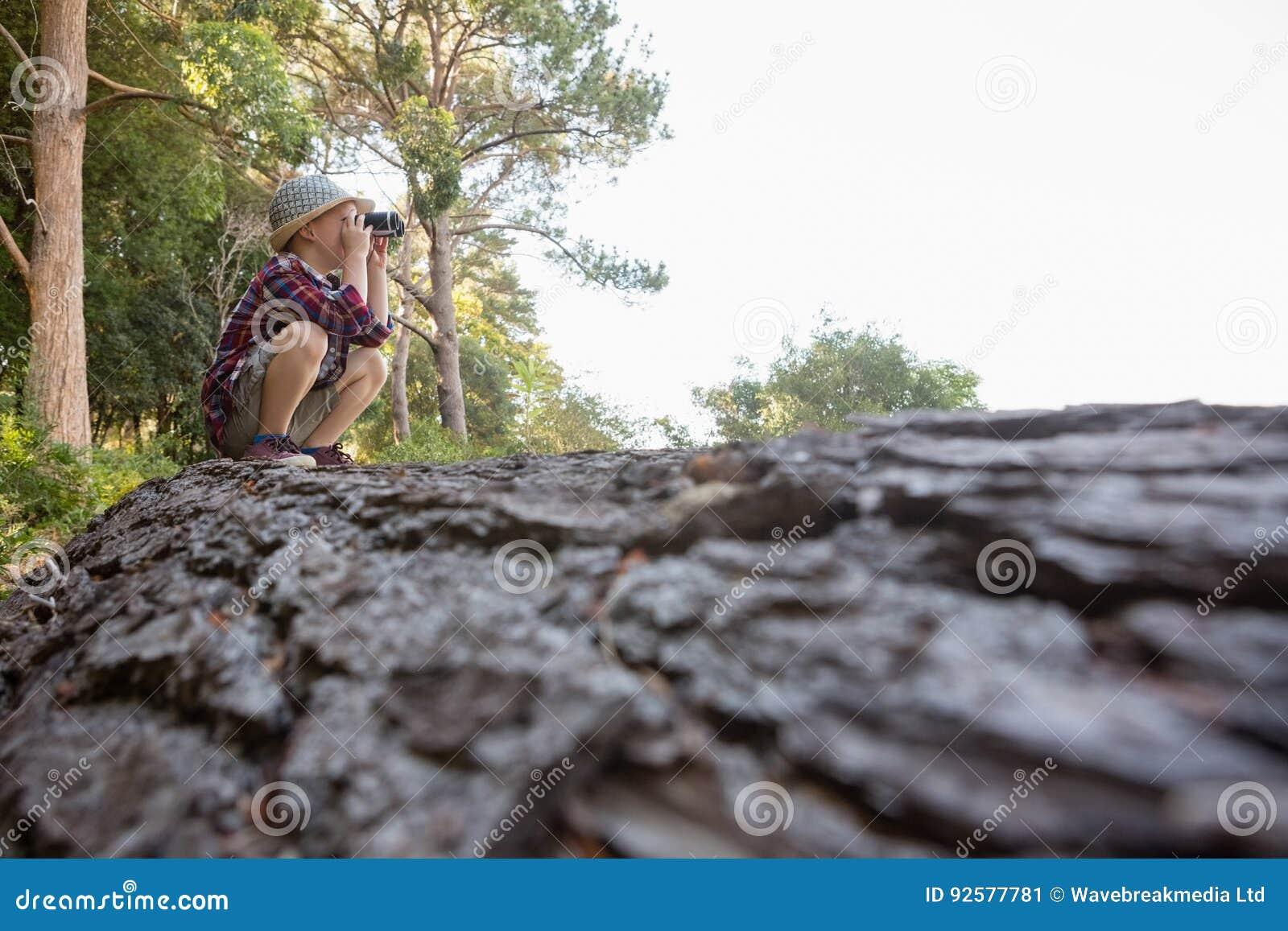 Junge der ferngläser im wald verwendet stockbild bild von wald