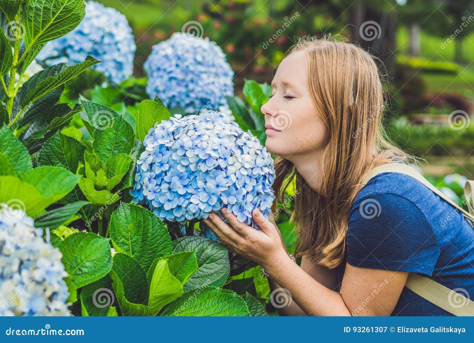 Junge Frau, die den Geruch der Hortensie genießt Mädchen, das nahe a stillsteht