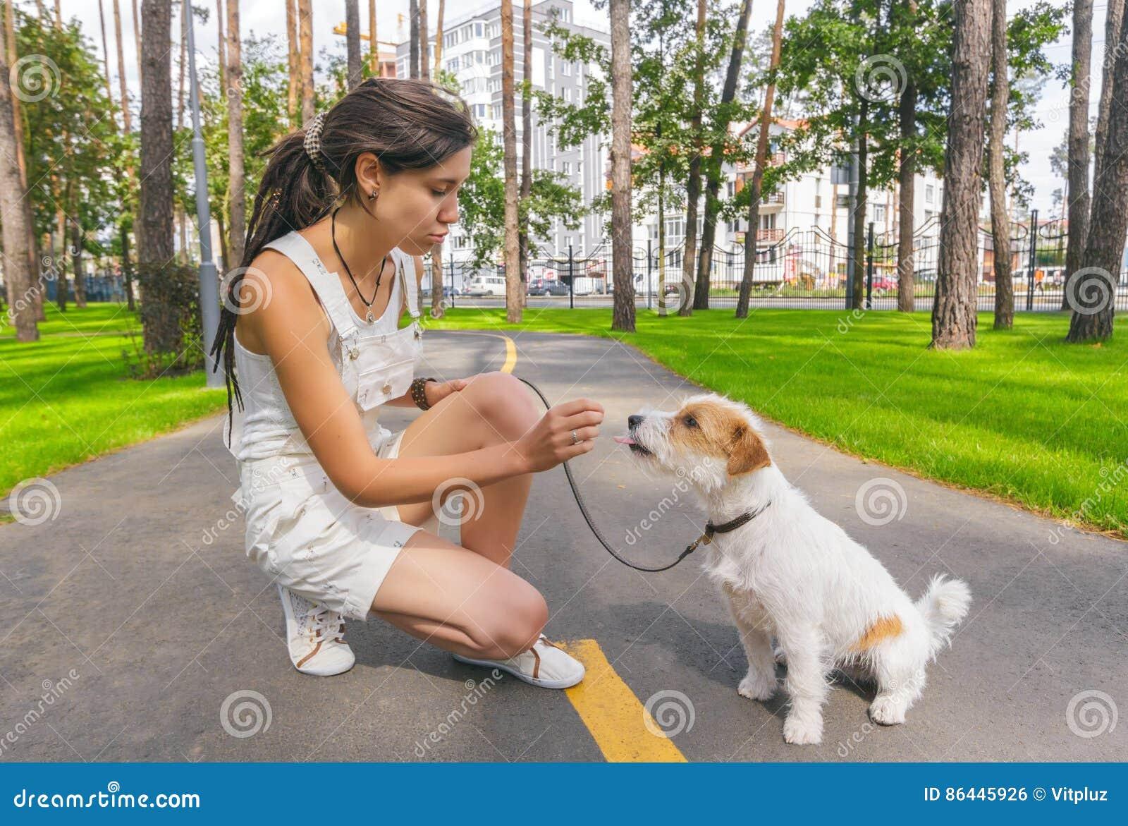 Junge Frau, die ihren Hund in einem Sommer-Park ausbildet
