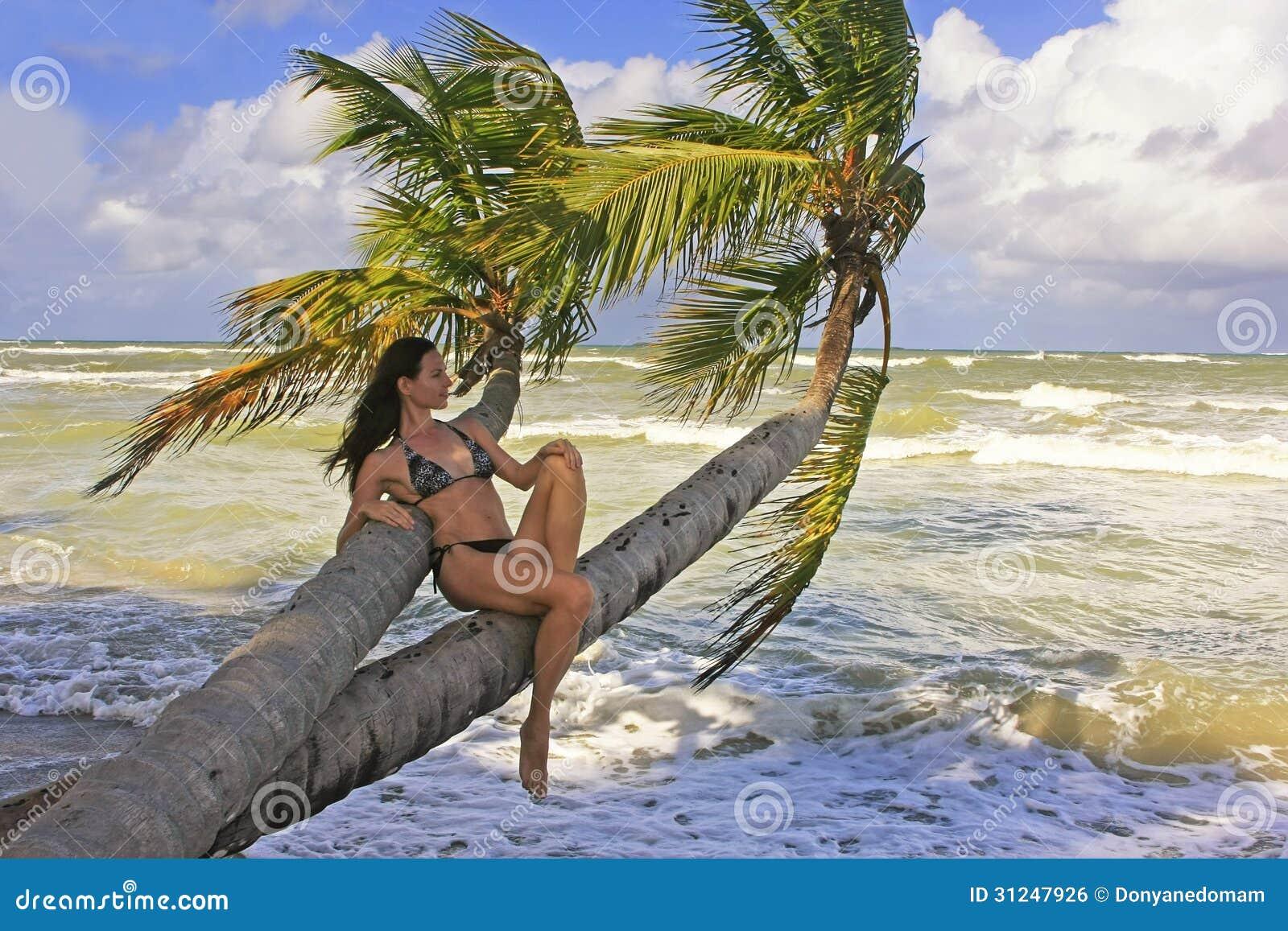 junge frau im bikini der auf palmen sitzt stockfoto bild von dominikanisch paradies 31247926. Black Bedroom Furniture Sets. Home Design Ideas