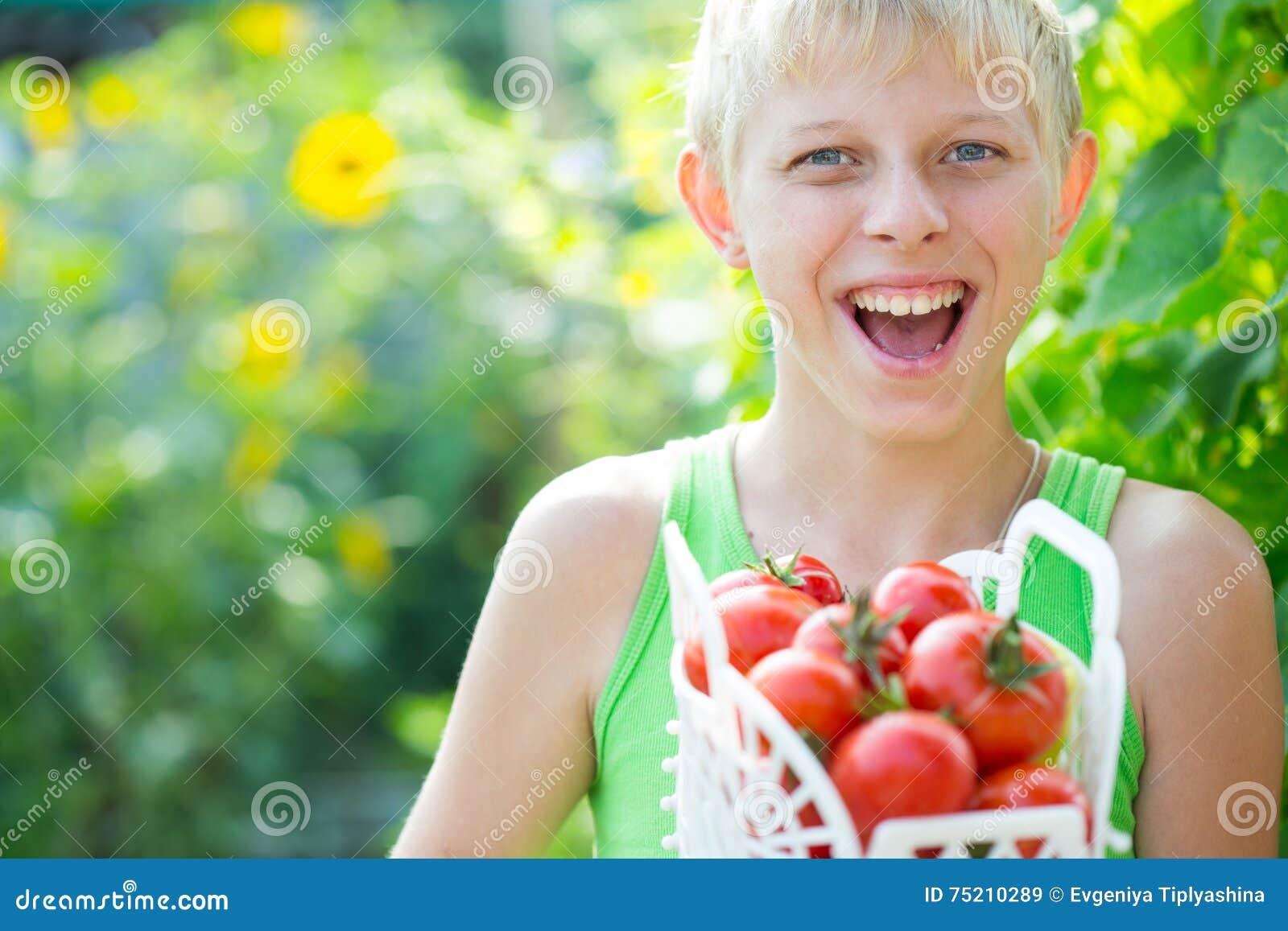 Junge mit einer Ernte von Tomaten