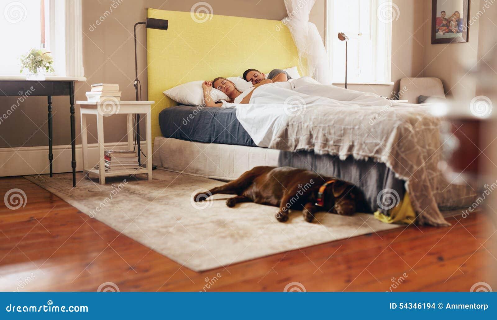 junge paare die bequem auf bett mit hund auf boden schlafen stockfoto bild von mann leben. Black Bedroom Furniture Sets. Home Design Ideas