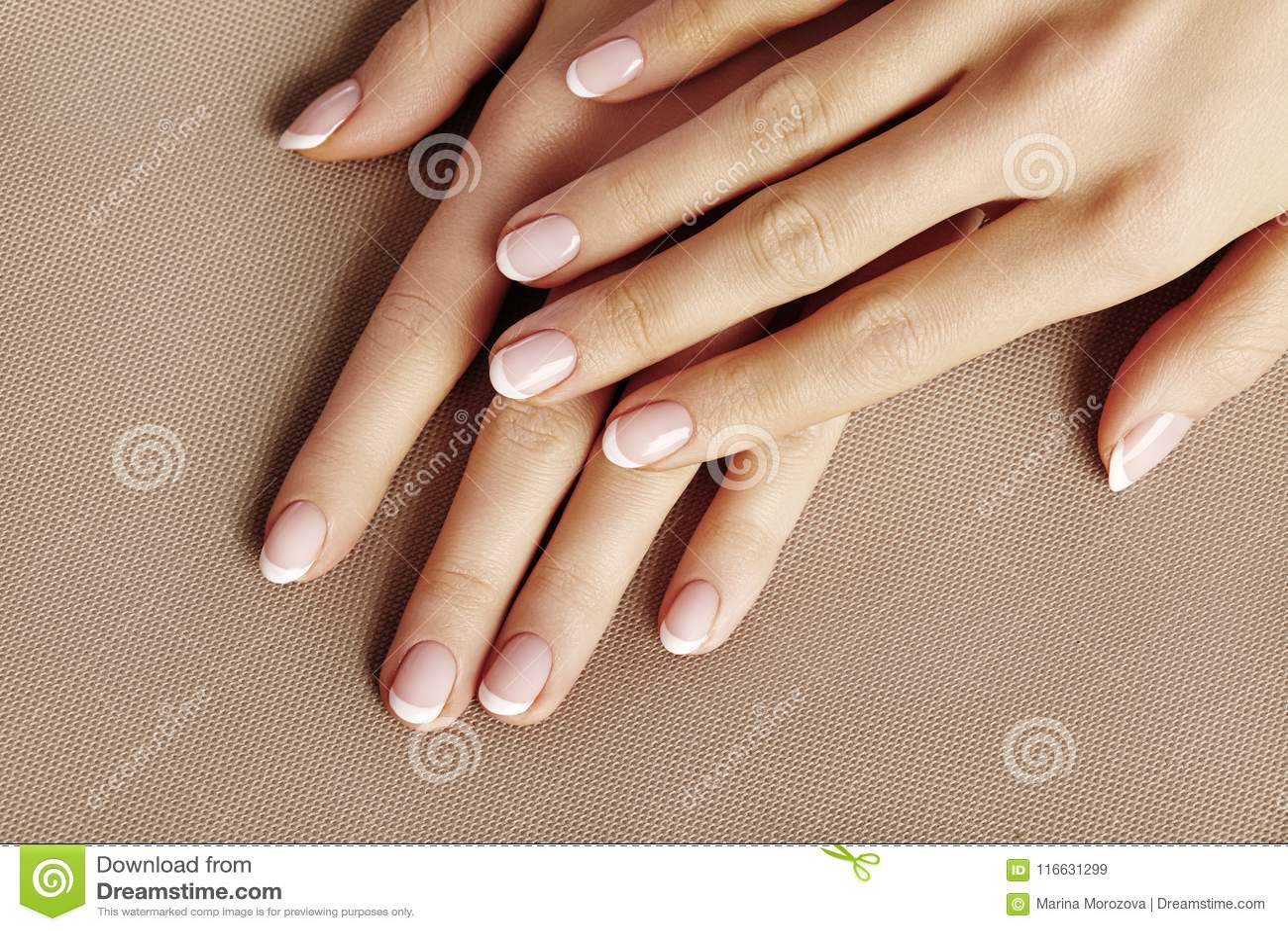 Junge weibliche Palme Schöne Zauber-Maniküre Französische Art kosmetische Produkte Interessieren Sie sich für Hände und Nägel, sa