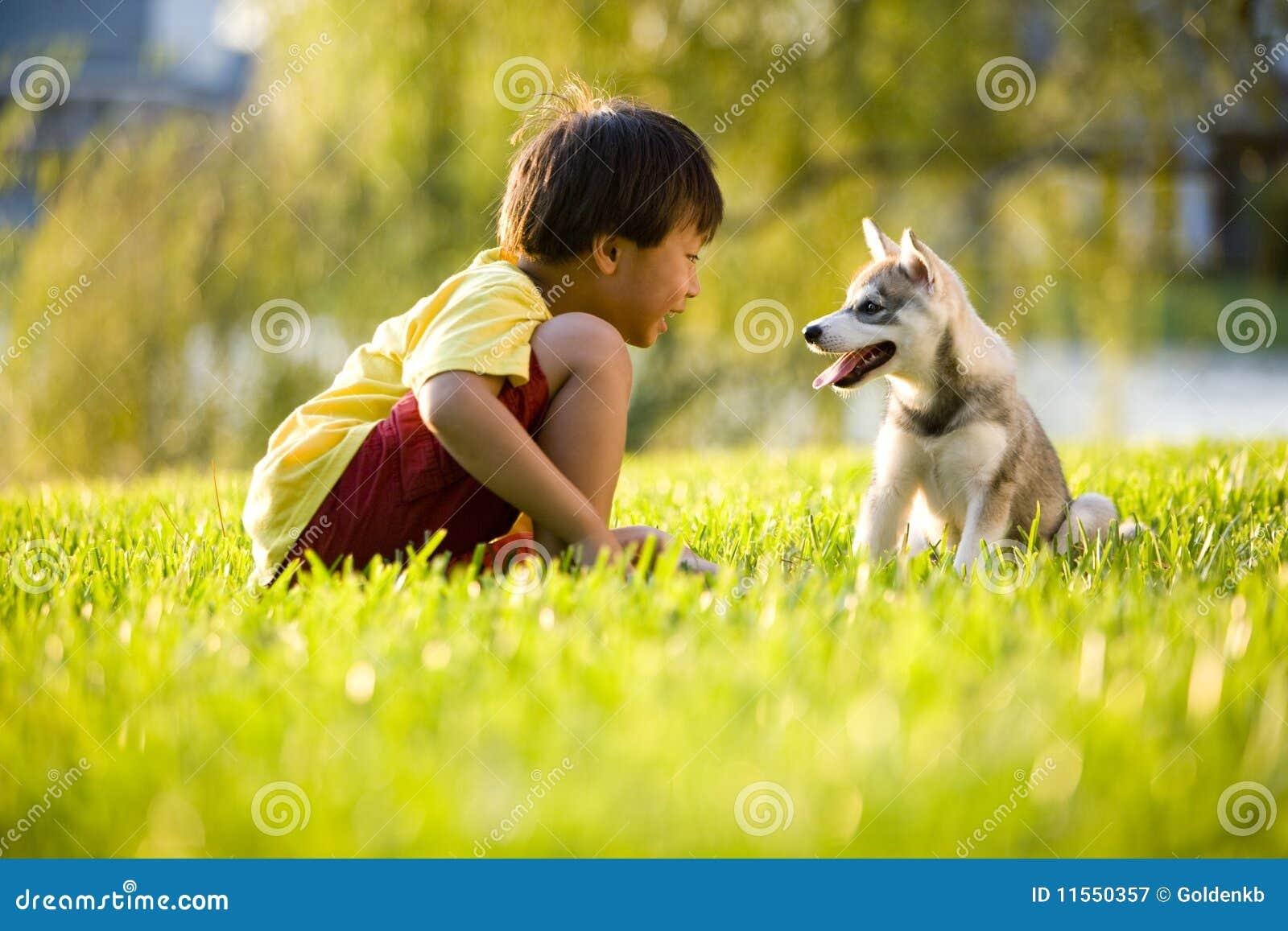 Junger asiatischer Junge, der mit Welpen auf Gras spielt