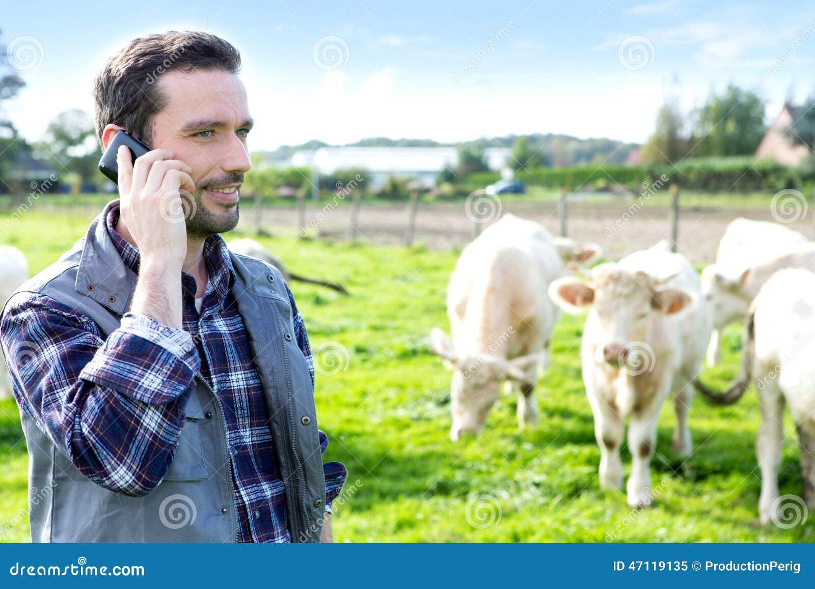 Junger landwirt bei der arbeit  Junger Attraktiver Landwirt, Der Handy Auf Einem Gebiet Verwendet ...