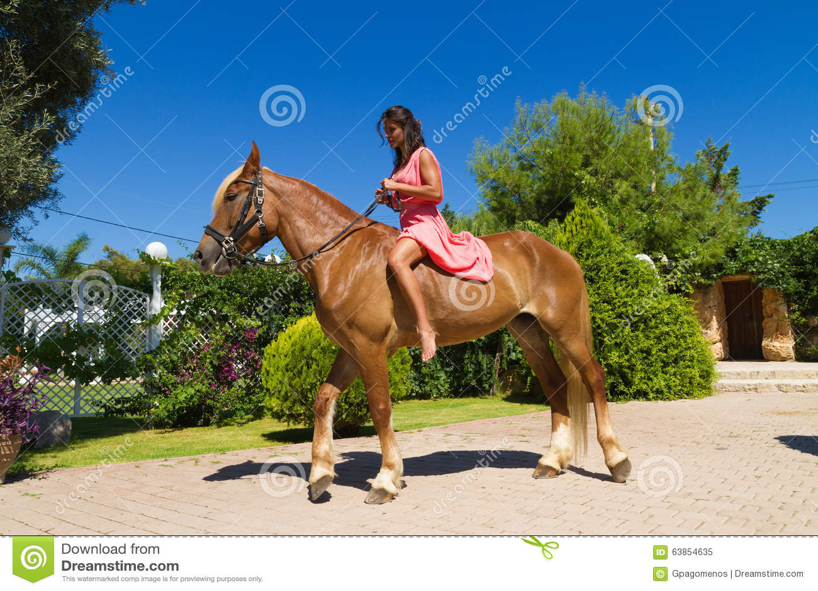 Junger Brunette mit dem roten Kleid, das ihr Braun reitet