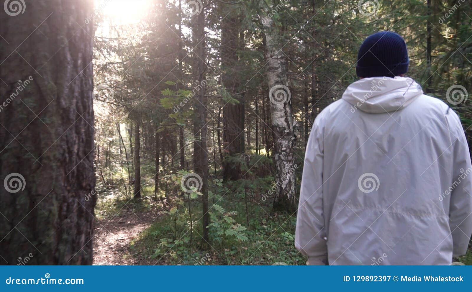 Junger Mann auf Camping-Ausflug Konzept der Freiheit und der Natur Ansicht des Mannes von der Rückseite gehend in Holz entlang We