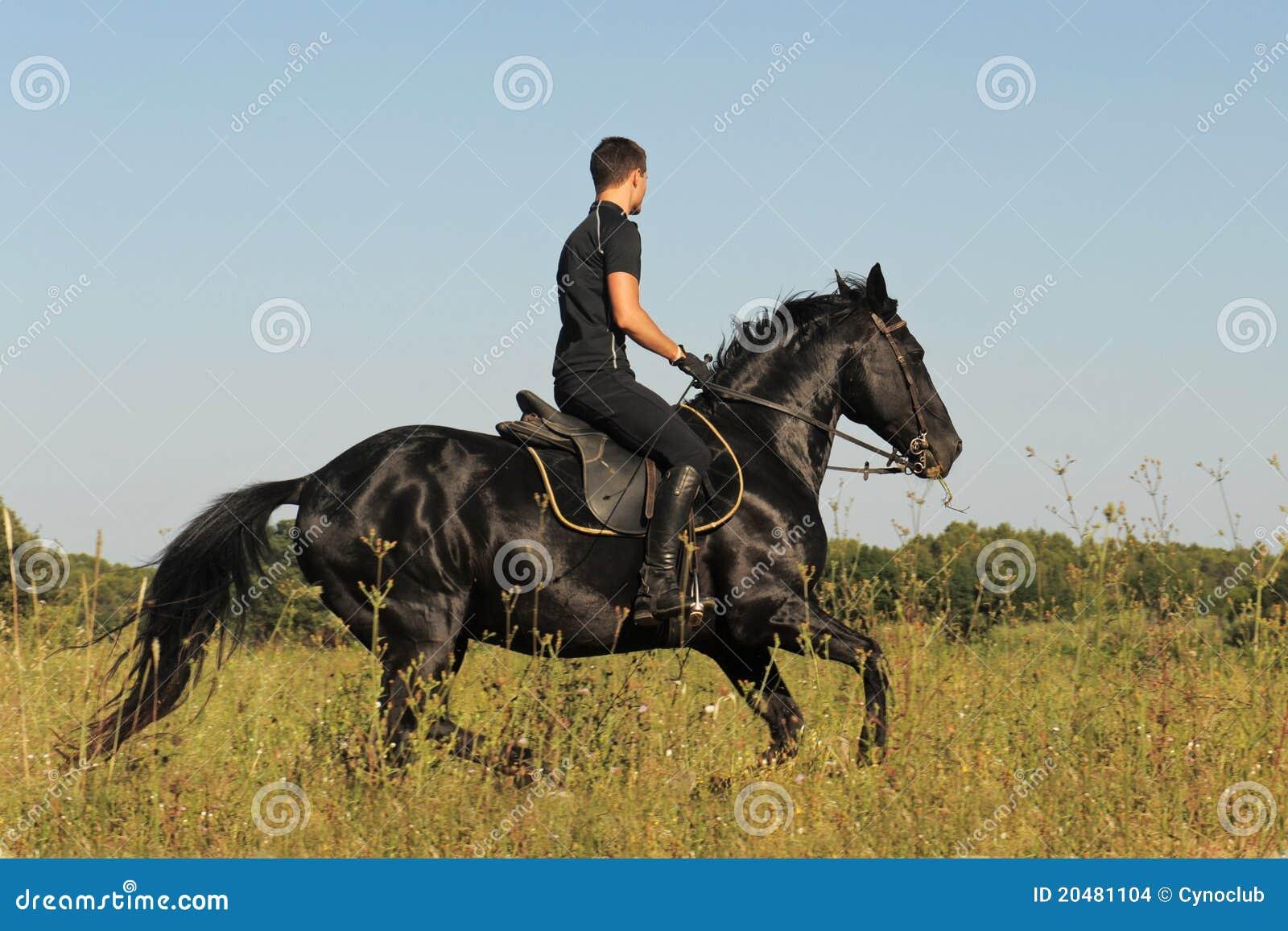 Junger Mann und Pferd stockfoto. Bild von reiter, jung