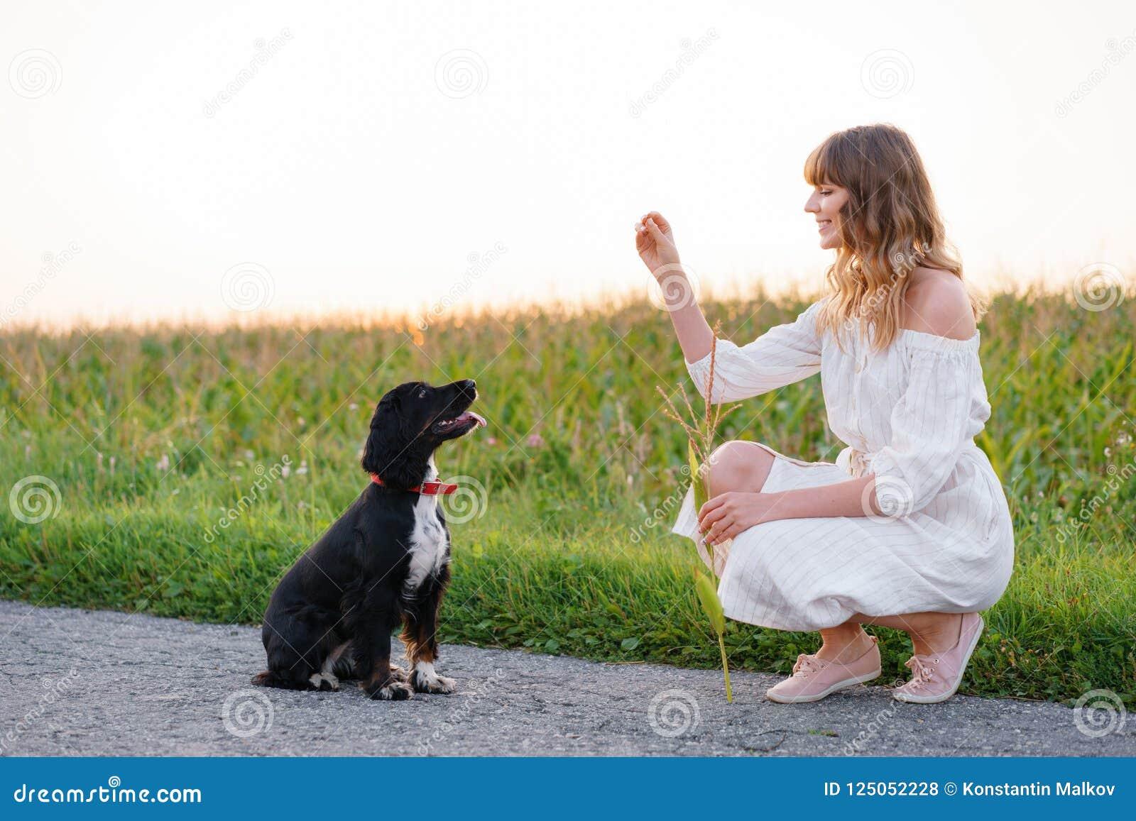 Junges nettes Mädchen, das ein Hundrusse-Spaniel ausbildet Schwarzes Hündchen sitzt zu ihrem Inhaber Sonnenuntergang in der Natur