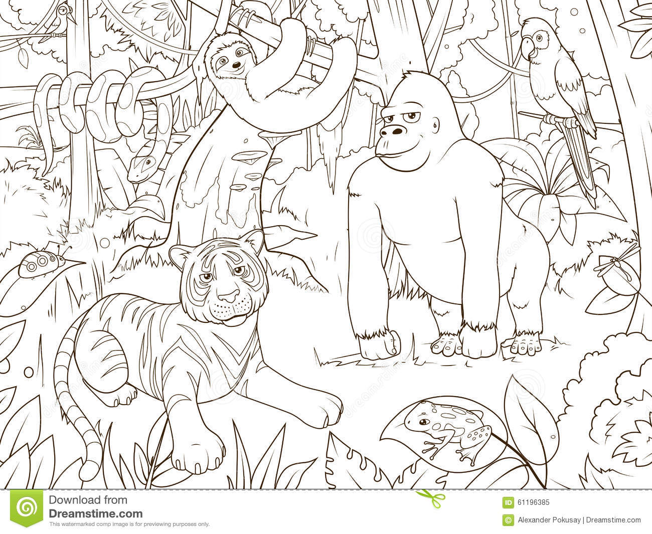 Jungle Animals Cartoon Coloring Book Vector Stock Vector Image