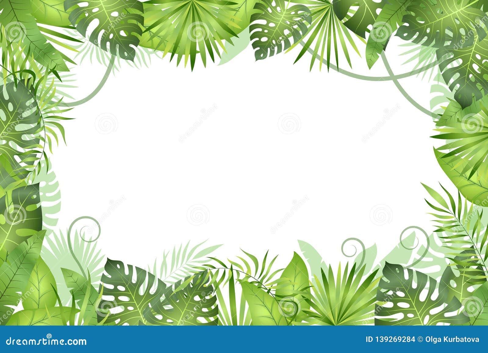 Tropical Leaves Backdrop Jungle Party Backdrop T