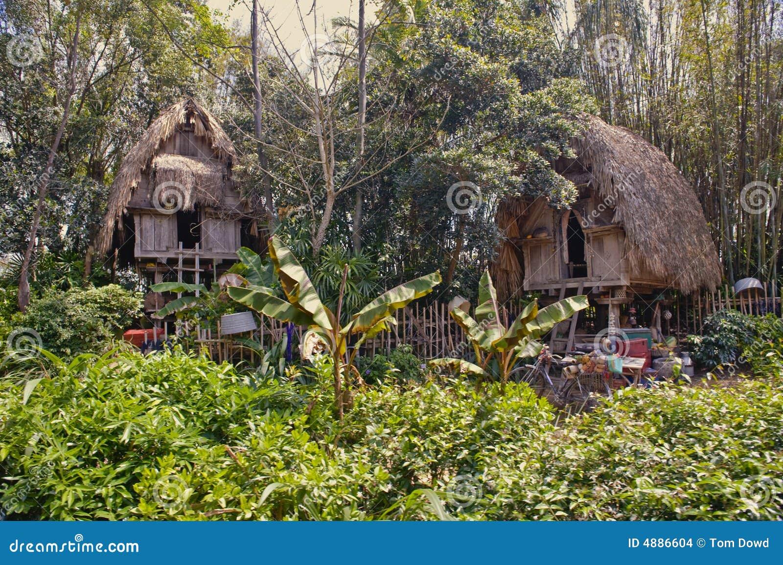 Jungle huts