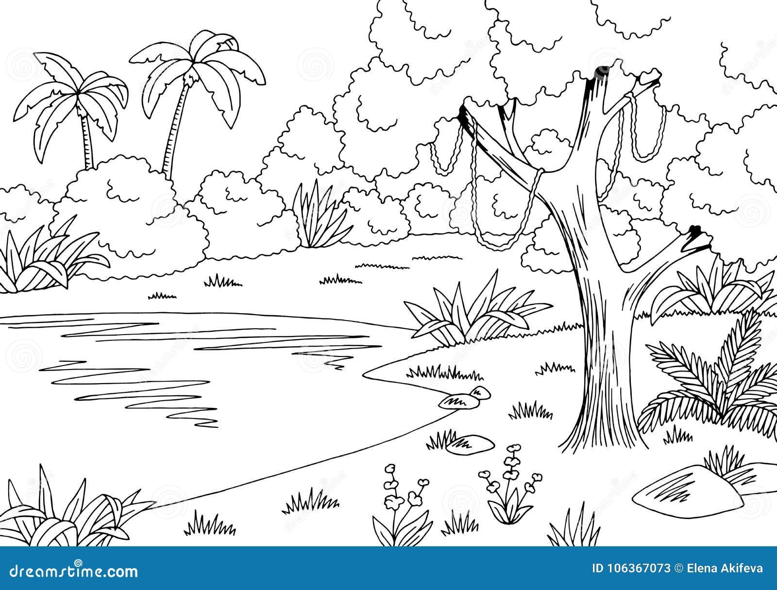 Jungle Lake Stock Illustrations