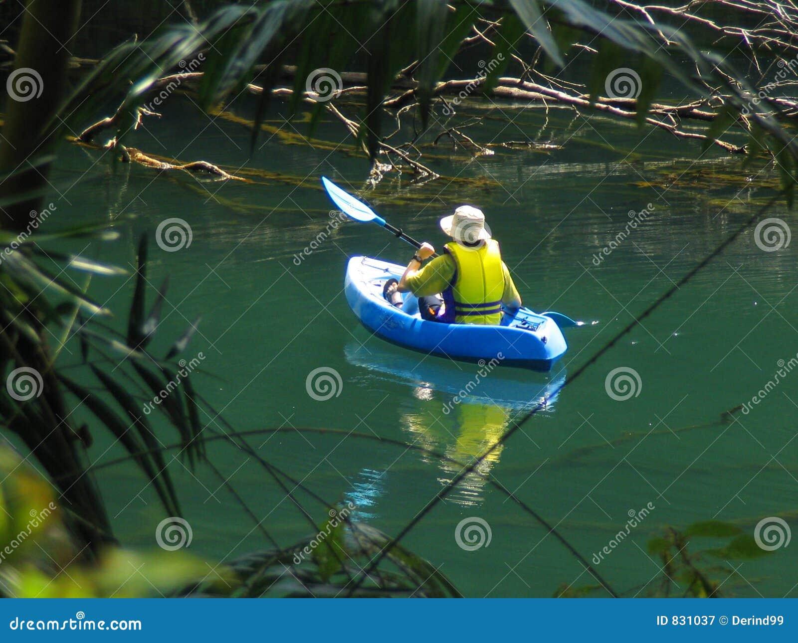 Jungle Paddle