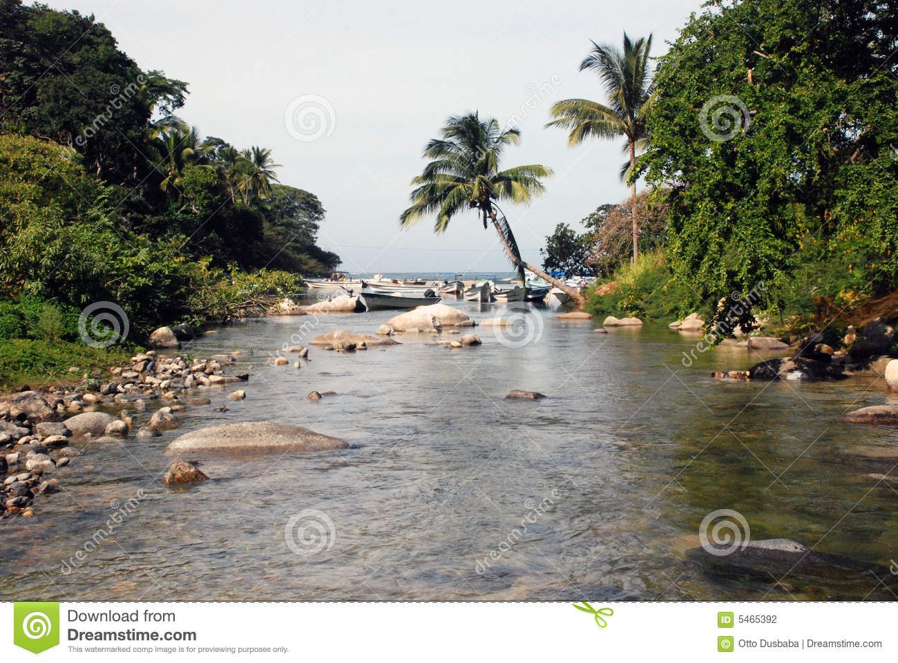Jungle river in southern Mexico