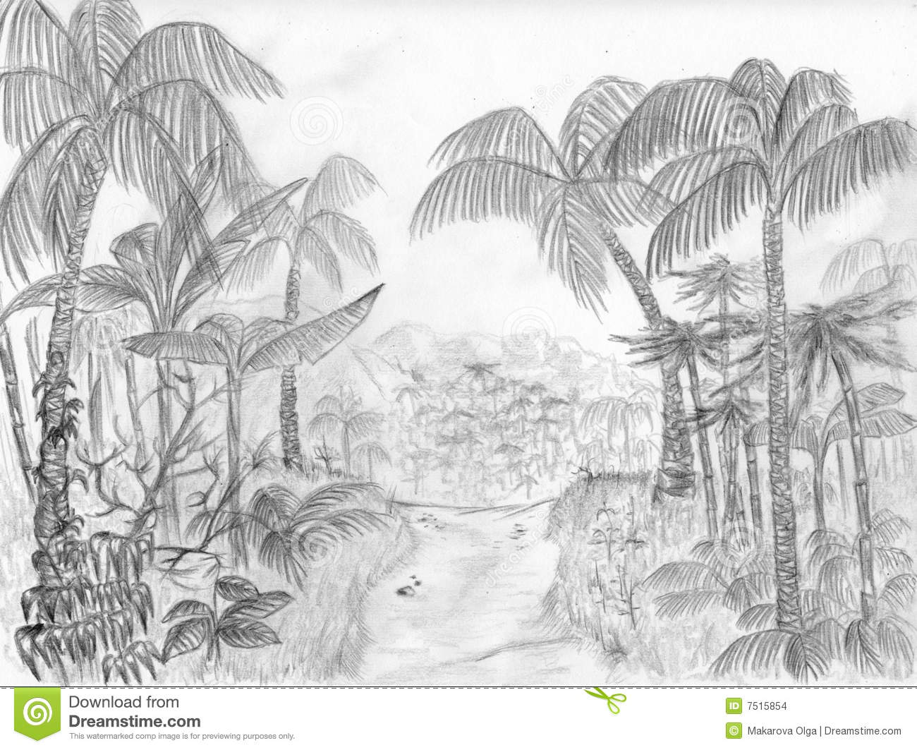 This is a road leading through the jungle pencil drawing