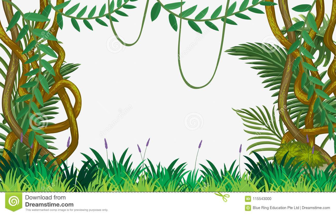 a jungle template with vine stock vector illustration of natural