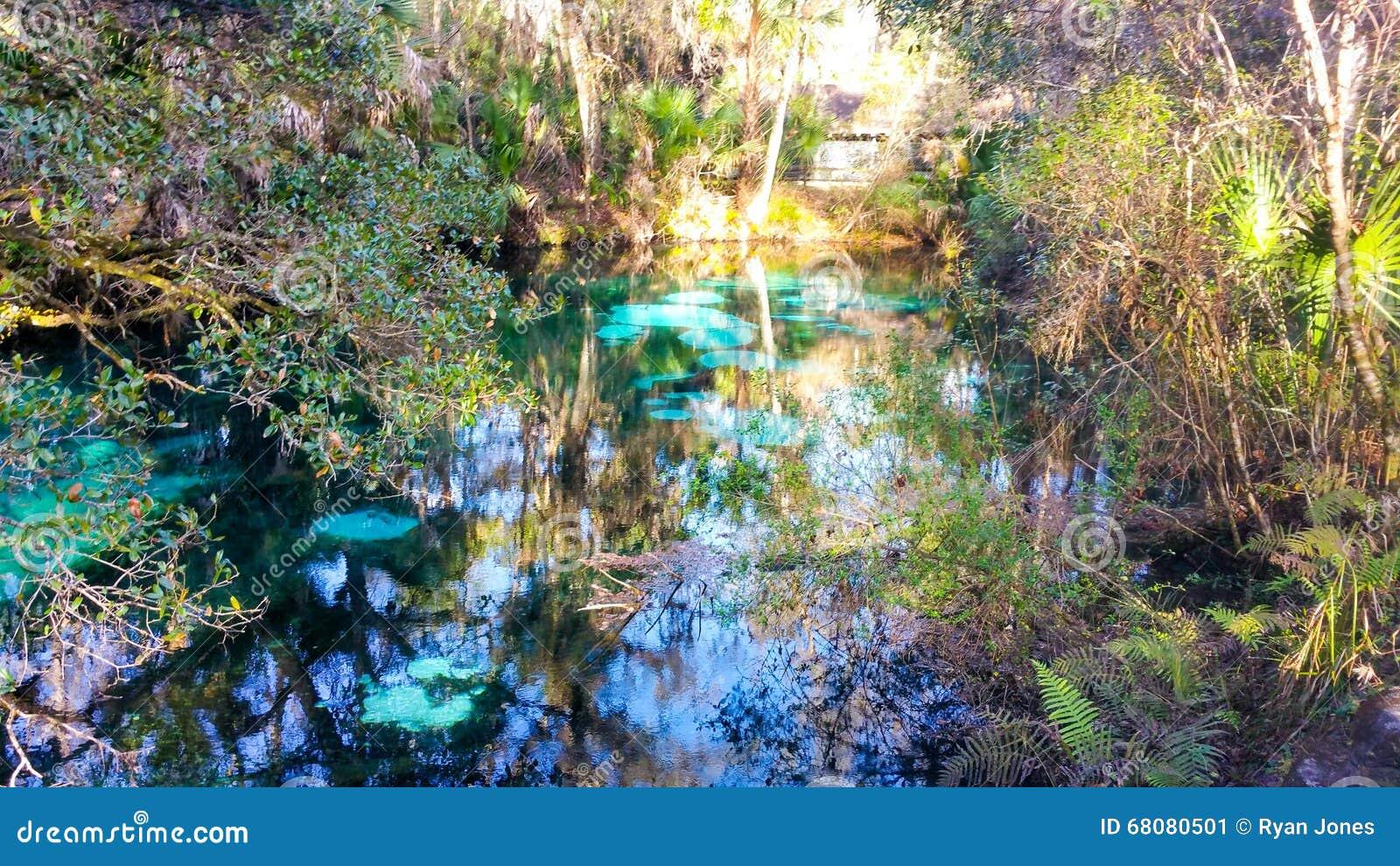 Juniper Springs, FL