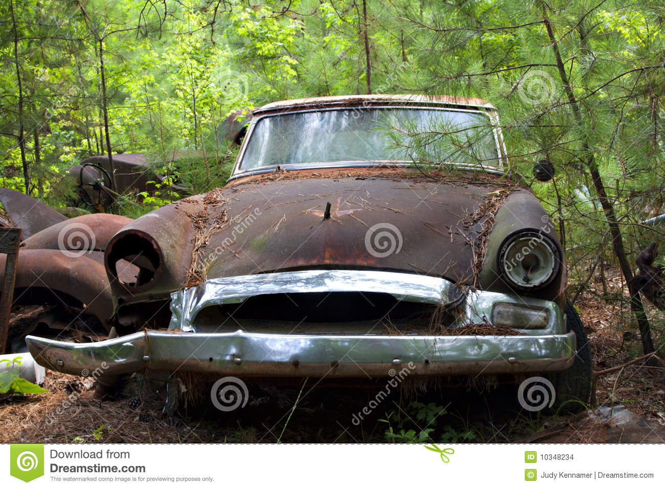 Junk Yard Car In Trees And Weeds Stock Images Image