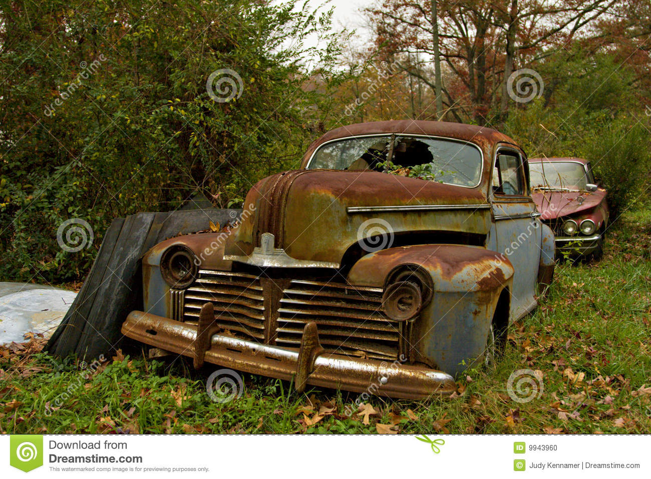 Junkyard Cars And Trees Stock Photo Image Of Pickup