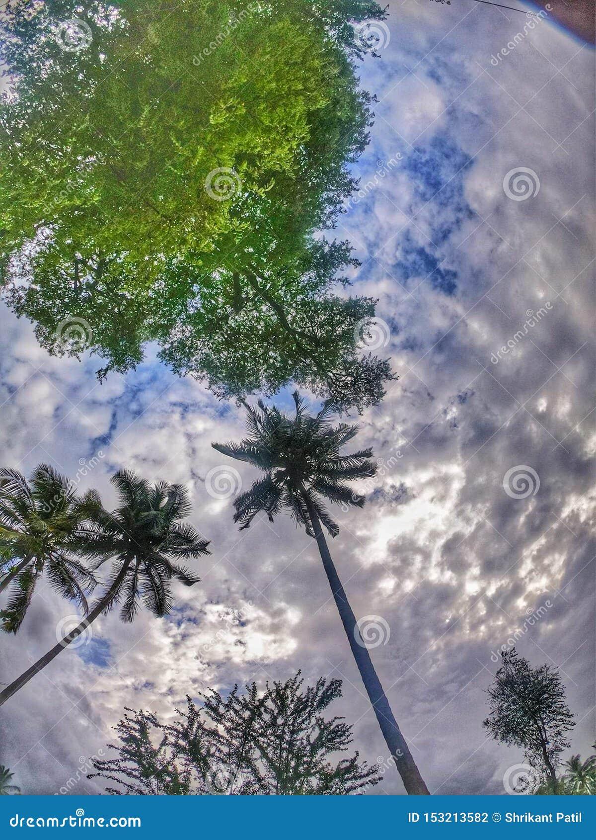Just a click of Sky