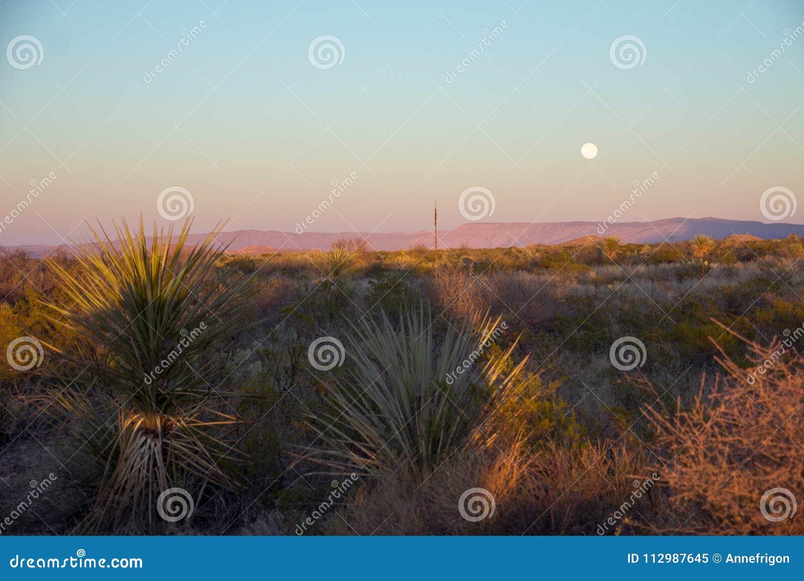 Full moon rises over arid Southen Texas
