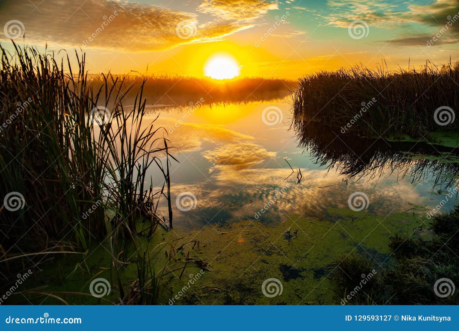 Jutrzenkowa połowu ranek rzeka