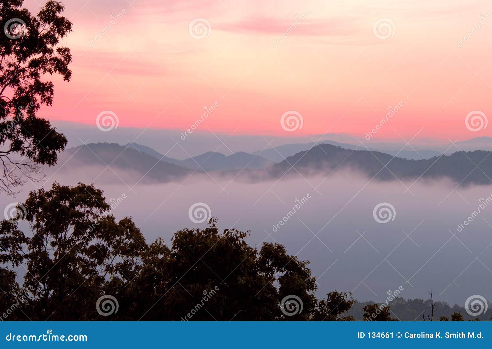 Jutrzenkowych pogórzy parku narodowego gór parkway smokey tn - super