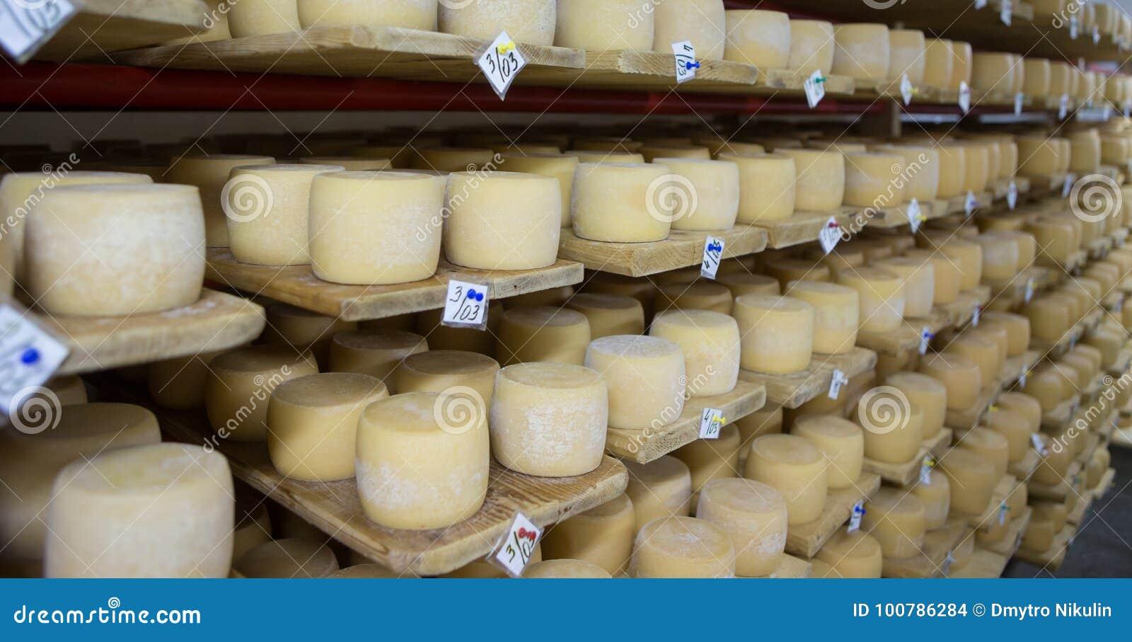 Källare för schweizisk ost