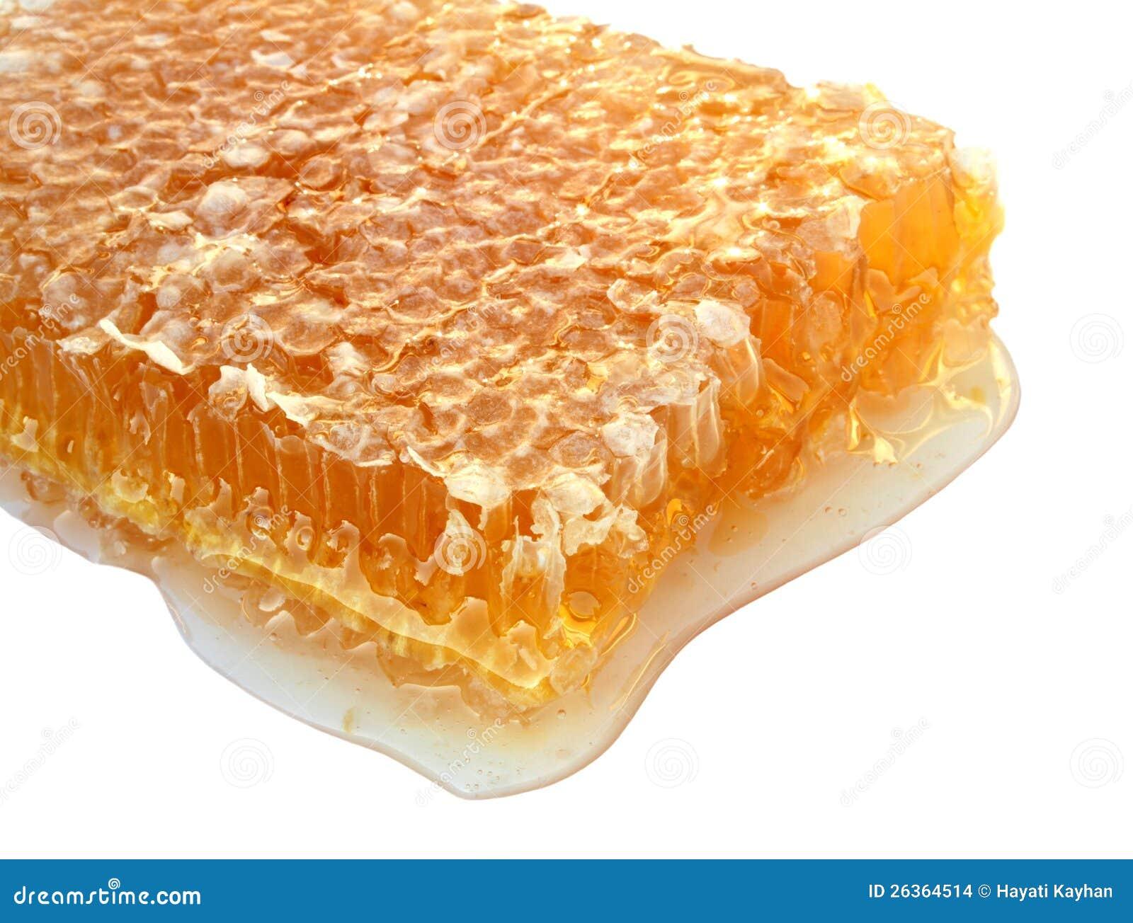 Köstliche Bienenwabe