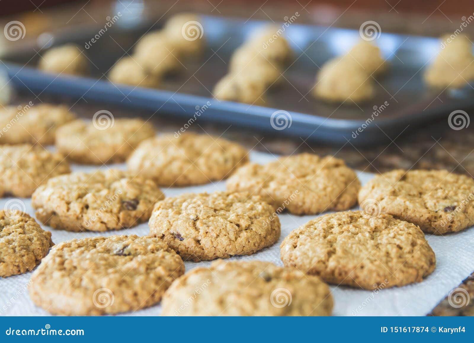 Kühles Recht der frischen warmen selbst gemachten Plätzchen aus dem Ofen heraus