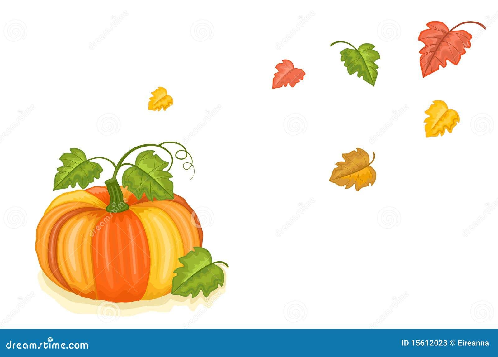 Kürzlich geernteter Kürbis des Herbstes